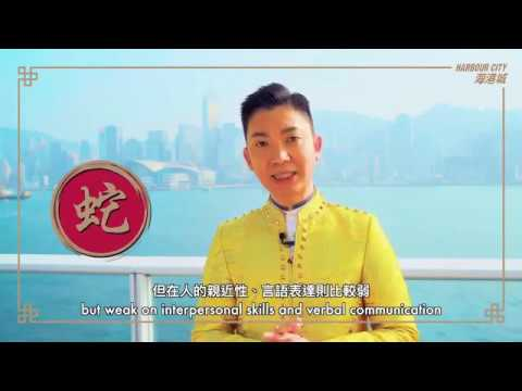 2019年 生肖(蛇)運程 - 李丞責、蘇民峰、麥玲玲、李居明