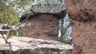 Крым. Каменные грибы. 09.2010(, 2010-10-23T17:58:25.000Z)