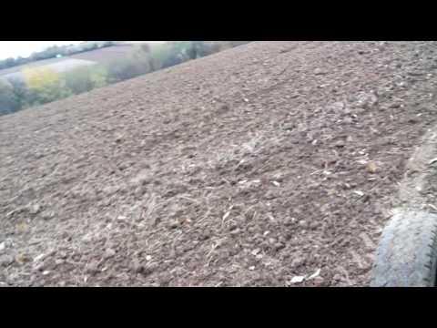 Setva Pšenice 2016- IMT 539 Poktivanje Zrna Drljacom