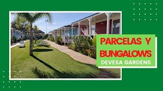 PARCELAS y BUNGALOWS - Devesa Gardens - Valencia