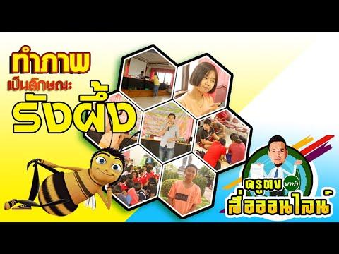 การทำภาพที่เป็นลักษณะรังผึ้ง ด้วยโปรแกรม Photoshop