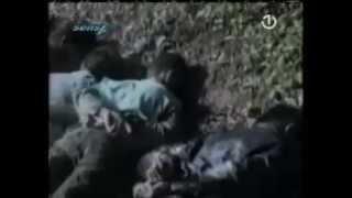 Srebrenica Massacre Images! (Srebrenitsa Katliamı Görüntüleri !)