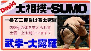 288kgの体が支えられない力士-大露羅/武拳-大露羅/2018.5.26/Buken-Orora/day14 #sumo