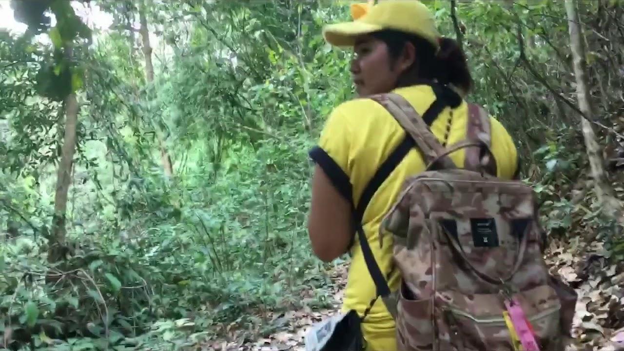 Download มวกเหล็กทริป บุกป่า ฝ่าดง