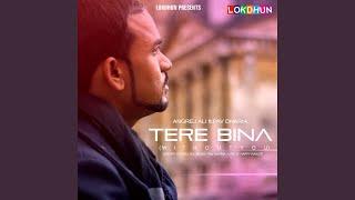 Tere Bina (feat. Pav Dharia)