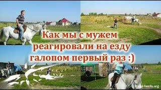 Как мы реагировали на езду галопом первый раз: обучение верховой езде в Феневичах под Киевом