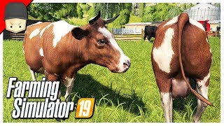 TERRAFORM TOOL & COWS! : Ep.13 (Let's Play Farming Simulator 19)