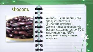 Кулинарная энциклопедия - Фасоль
