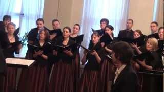 Mīlas dziesmas kamerkoru Austrums un INTIS koncerts RLB,10.02 2013 - 00641.MTS
