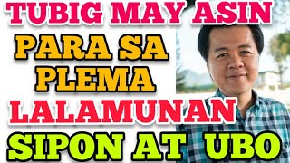 Tubig May Asin: Para sa Plema, Lalamunan, Sipon at Ubo - by Doc Willie Ong #913