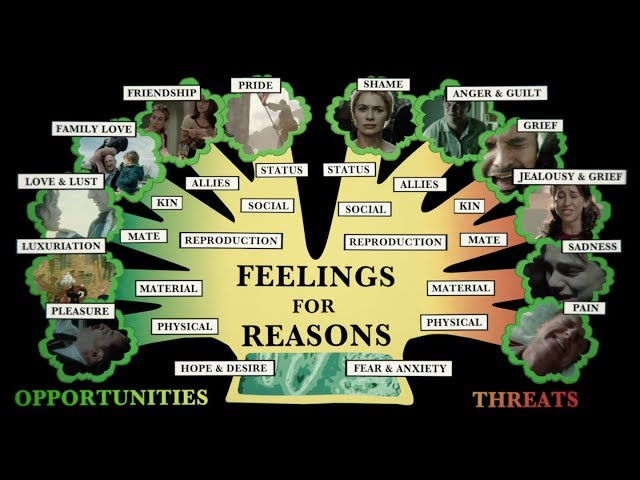 Feelings for Reasons – Baba Brinkman Music Video