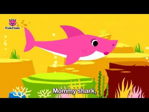 Baby Shark Animal Songs PINKFONG Songs for Children - YouTube