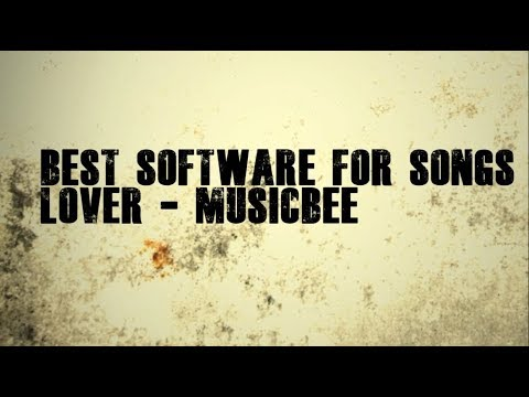 Best Software for Songs-MusicBee