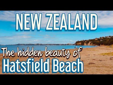 Hatsfield Beach In Auckland, New Zealand