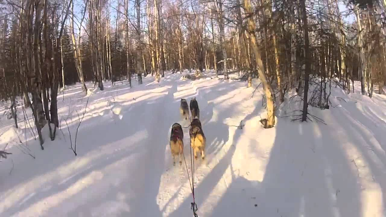 Libby Riddles sled dog musher nudes (84 photos), video Ass, YouTube, legs 2015