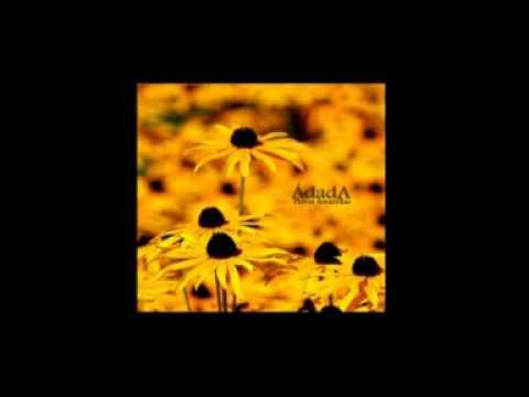 �-Flores Amarillas