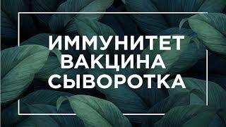 Иммунитет, вакцина, сыворотка   ЕГЭ Биология   Даниил Дарвин