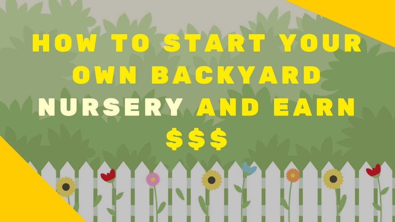 Make Easy Money By Starting A Plant Nursery In Your Backyard Gold Tree India