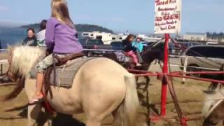 VLOG #11, MAKAH DAYS, NEAH BAY, BEACH! August 23, 2014