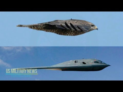 A B-2 Stealth Bomber Flyby Is Eerily Quiet