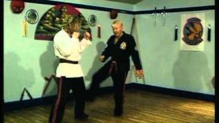 Free style Kenpo Karate downloads Sparring Techniques (A Short Insight ) Download Freestyle Dvds