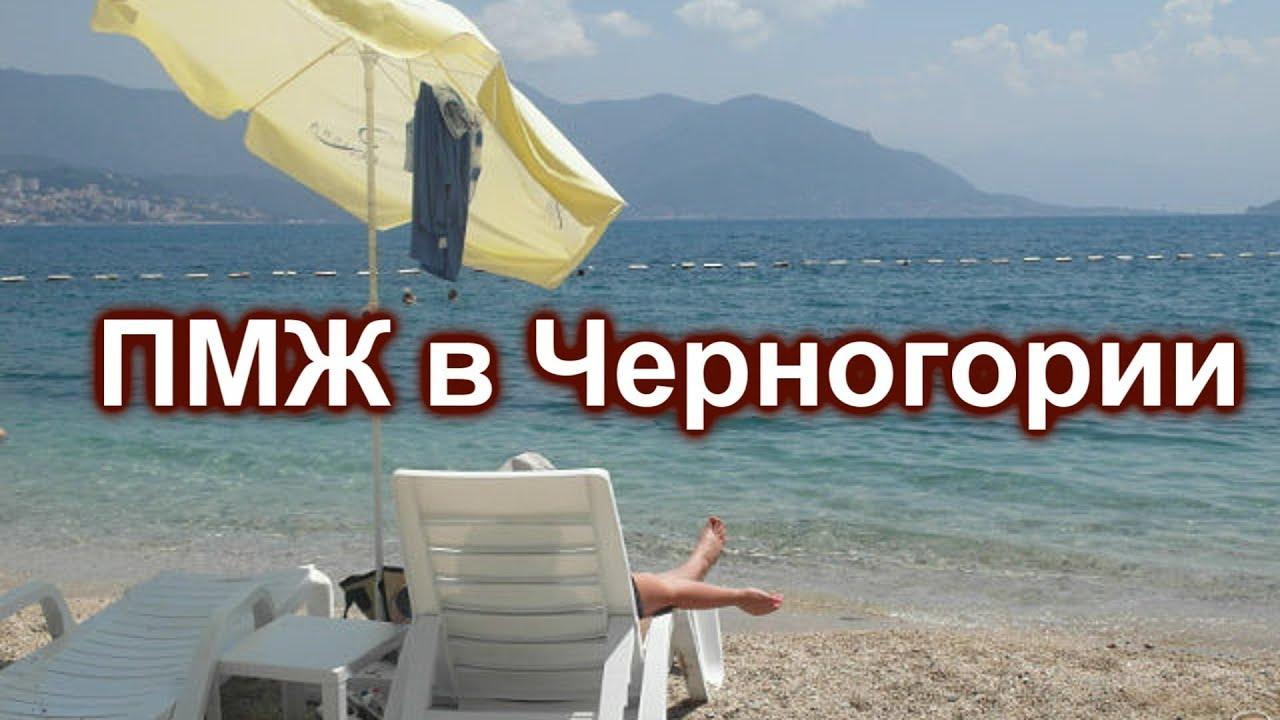 Пмж в черногории отзывы дубай питер самолет