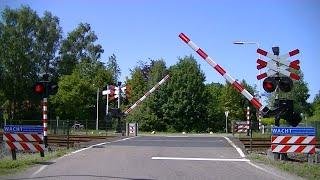 Video Spoorwegovergang De Westereen // Dutch railroad crossing download MP3, 3GP, MP4, WEBM, AVI, FLV Oktober 2018