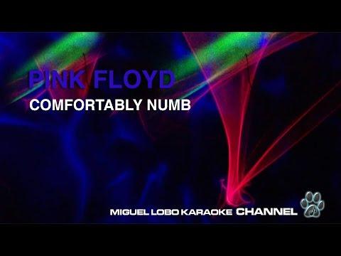 PINK FLOYD - COMFORTABLY NUMB - Karaoke Channel Miguel Lobo