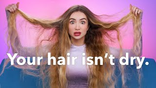 Your Hair Isn&#39t Dry... The Biggest Hair Lie  Hair Science