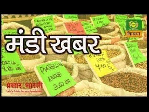 Mandi Khabar - 02 July 2020 | जानिए मंडियों में दालों, अनाज, फल, सब्जी का आज का भाव- मंडी खबर
