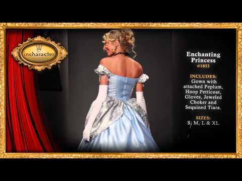 Elite Enchanting Princess Adult Costume