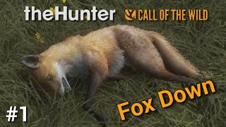 """theHunter: Call of the Wild - """"First Steps, Fox Down"""" - MP with Pratze 