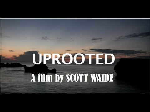 UPROOTED [documentary]