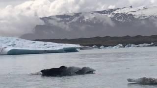 no 5 jokulsarlon glacier lagoon