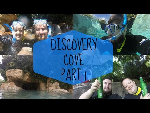 Discovery Cove Part 1 - Swimming in Paradise & Amazing Food!