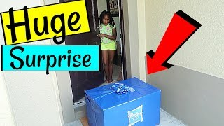A Huge Surprise Box Came For Me   Niyah Vlogs