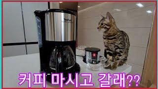 광고 테팔 수비토 그란데 커피메이커