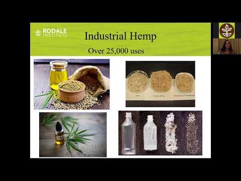 Webinar: Utilizing Industrial Hemp to Address Weed Issues & Enhance soil Health
