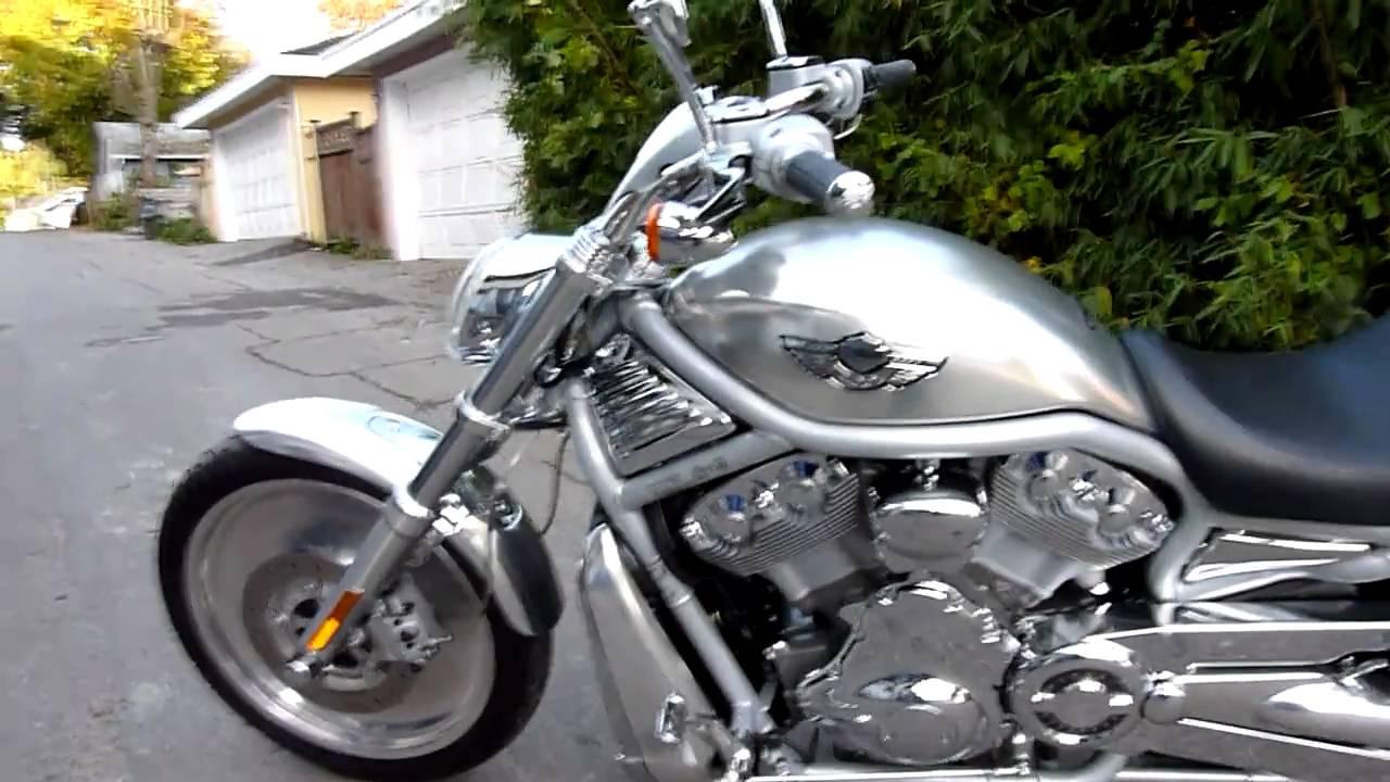 2003 Harley V-rod