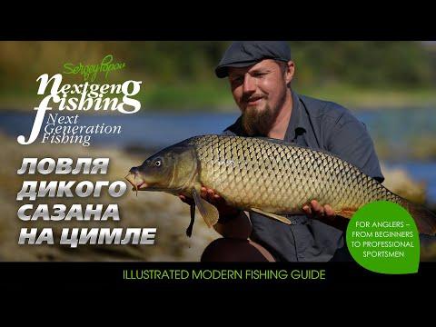 Ловля на дикого сазана на водохранилище / Рыбалка нового поколения