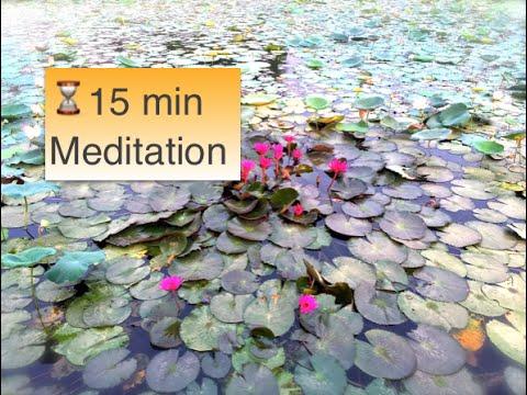 Positive Vibrations ♫ 15 minutes Meditation Music Yoga Healing Spa Massage Reiki Chakra Cleansing