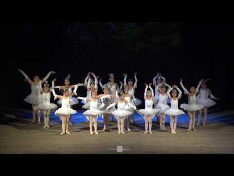 FESTIVAL DANSA 2016 / 17 HD