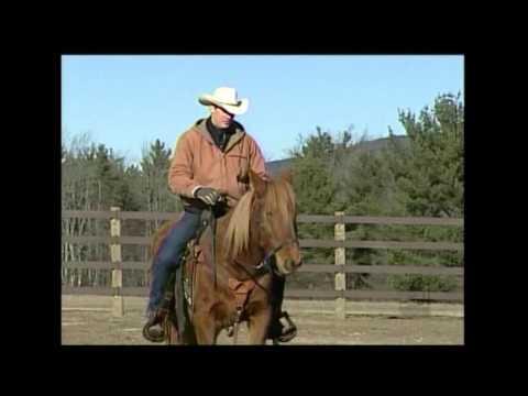 HorseTenders on WMUR's Chronicle