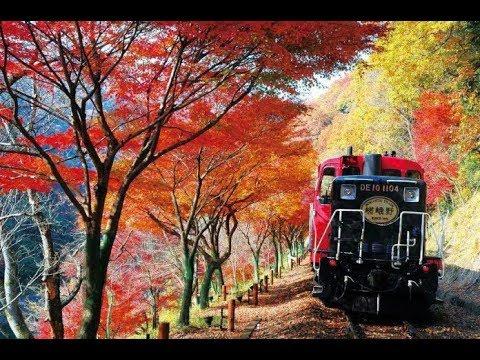 [Review] 'ฮะจิเมะ มาชิเตะ'  Sagano Romantic Train  @ Kyoto EP. 3  (Thai language)