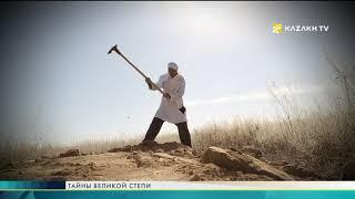Тайны великой степи №17. Древняя столица великой степи - Сыгнак