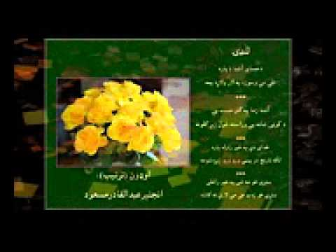 سردار علي تکر