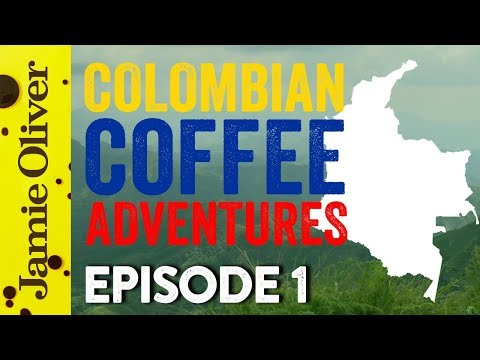 Colombian Coffee Adventures | Episode 1 | John Quilter AKA Food Busker