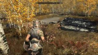 The Elder Scrolls V: Skyrim 29-5-2016 (2)