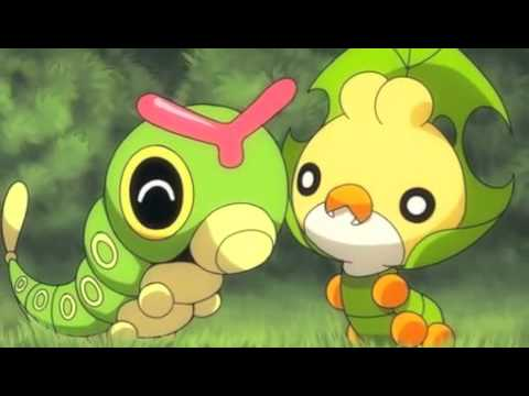 Cute Pikachu And Ash Wallpaper Caterpie And Sewaddle Cries Youtube