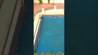 Child drowning in swimming pool.....Saved by sister in time